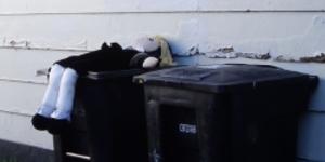 TV Troll: Trash Talk