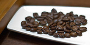 Feline Faeces Make Costly Coffee