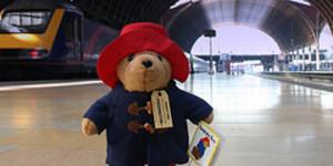 Paddington Bear: Outta Detention, Onto Bookshelves