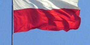 Polish Pop Parade