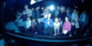 The Age Of The Aquarium