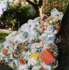 rubbish1901.jpg