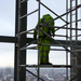 A worker gazes over London from 33 stories up