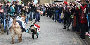 Preview: Oxford Vs Cambridge Goat Race 2011