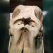 Elephant skull, sans tusks.