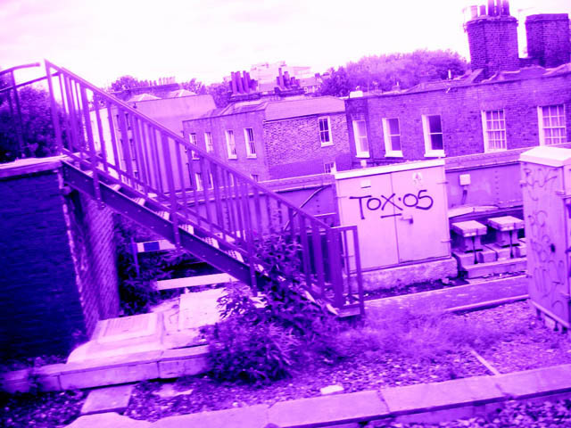 Graffiti: Tox Could Go To Jail