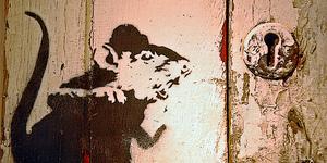 Banksy Exhibition at Andipa Gallery