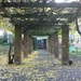 Rose Garden, Walpole Park