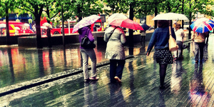 The Friday Photos: Umbrellas