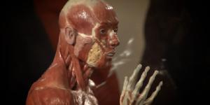 Anatomy Of An Athlete @ Hunterian Museum