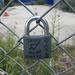 shorepadlock.jpg