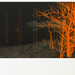 Andrew Mackenzie, Reservoir (Cadmium Orange), 2012. Courtesy Sarah Myerscough.