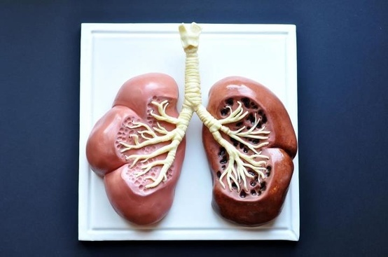 Slice of lung, anyone?