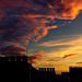 Rooftop surprise, by Robin Baumgarten