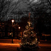 Christmas tree in Brentford by SImon & His Camera
