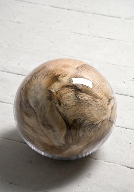 Adeline de Monseignat, Hairy Eye Ball, 2011. Courtesy the artist and Ronchini Gallery
