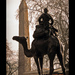 Memorial to The Imperial Camel Corps and Cleopatra's Needle on Embankment by Stuart-Lee
