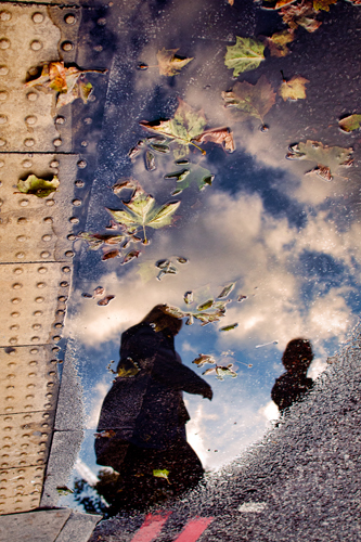 Autumn Puddle : An illustration of the temperamental UK weather