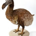Dodo. ® The Natural History Museum, London