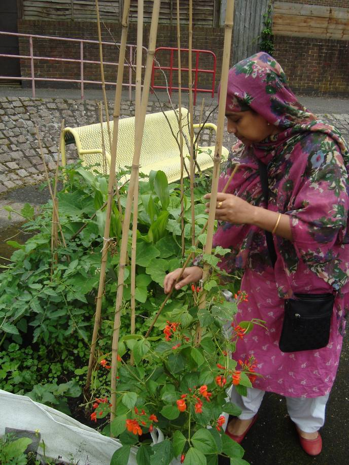 Sajeda with her runner beans