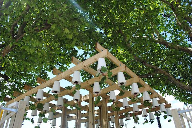 Hanging gardens.