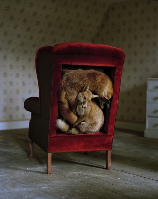 Miss Pokeno, (Allanah Curry), Trophy Chair (2009). Chair with taxidermy. Copyright the artist. Photograph copyright Tim Walker.