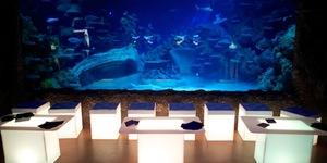 After Dark At London Aquarium And London Dungeon
