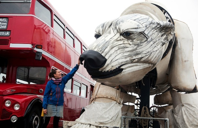 Walk With The World's Largest Polar Bear
