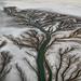 Colorado River Delta. Copyright Edward Burtynsky, courtesy Flowers London