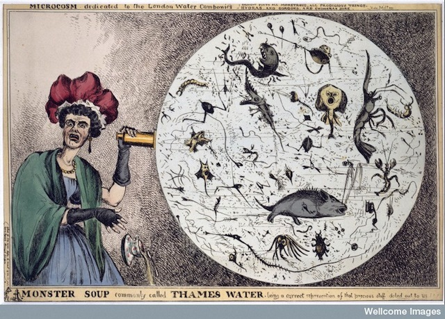 "L0006579 Engraving: 'Monster Soup..."" by William Heath Credit: Wellcome Library, London. Wellcome Images images@wellcome.ac.uk http://wellcomeimages.org 'Monster Soup, commonly called Thames Water', Coloured engraving 1828 By: William HeathPublished: [1828?]  Copyrighted work available under Creative Commons by-nc 2.0 UK, see http://wellcomeimages.org/indexplus/page/Prices.html"