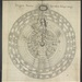 Great Chain of Being, an early attempt to organise hierarchies of life, with humans, of course, at the centre. 1617