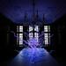 Installation: Sapphire Neon Tumbleweeds (Photo: Halcyon Gallery)
