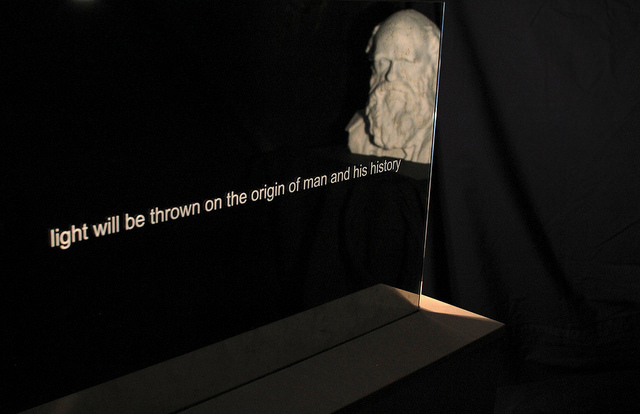 Josephine McNally: 'On one level this sculpture works as an interactive device – reflecting back whoever looks into it. On another, it is about seeing who we are. The etched words create interest which hopefully leads on to investigation – the basis of all science.'