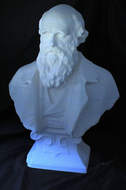 A 3D print of Darwin, completed by B>MADE, Bartlett Manufacturing and Design Exchange at The Bartlett School of Architecture, UCL. © UCL, Institute of Making/Robert Eagle
