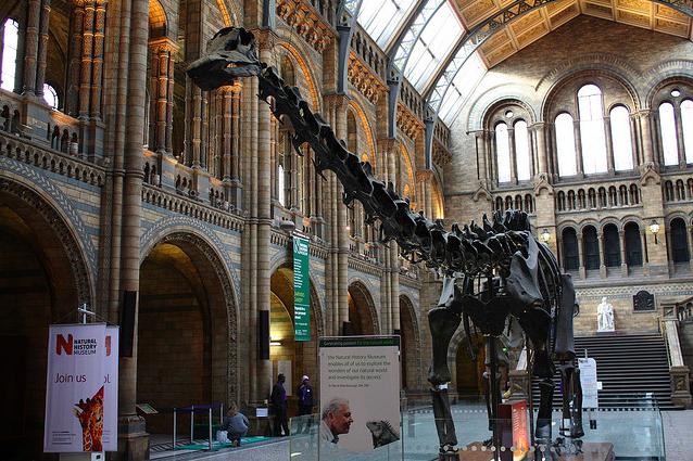 Behind The Scenes With #MuseumWeek