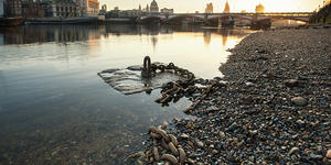 Totally Thames: A Celebration Of The River