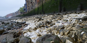 Secrets Of The Thames Foreshore