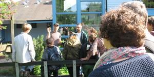 Chelsea Fringe 2014: Horticultural Highlights