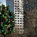 The traffic light tree in its old location at Canary Wharf, by Richard Watkins LRPS on Flickr