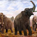 Woolly Mammoths (mural illustration) by Velizar Simeonovski. Copyright The Field Museum