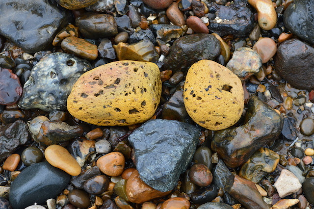 These 'Thames spuds' are actually old London bricks. Decades of tidal action have worn them into spheroids.