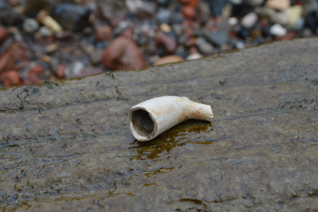 Clay pipes are a common find on the foreshore, and date from the 16th to the 18th century. We found this one within a few minutes of searching.