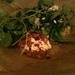 Broad beans, smoked ricotta, nettles, whey