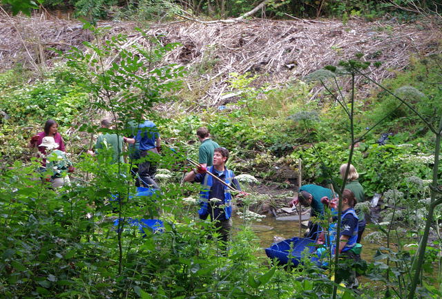 Help Clean Up South East London's Rivers