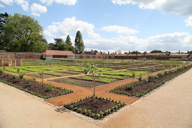 Visit Hampton Court Palace's Kitchen Garden For Free