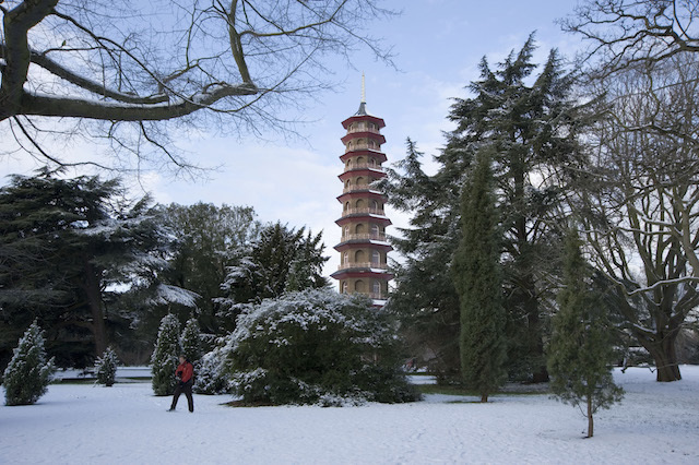 Ticket Offer: Visit Kew Gardens This Winter For Just £9.50