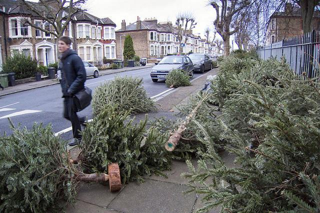 Where To Recycle Your Christmas Tree In London