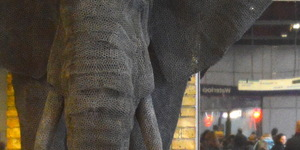 Why Is There An Elephant In Waterloo Station?
