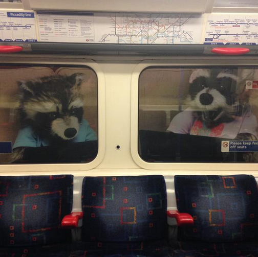 Your Photos Of Mutant Tube Beasts