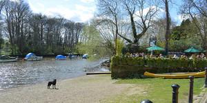 Weekend Walk: Richmond To Twickenham Along The Thames